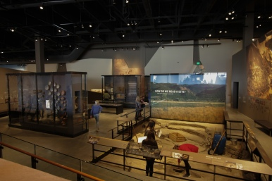 NHMU Interactive exhibit