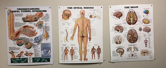 Neurology posters hang in Dr. R's office.